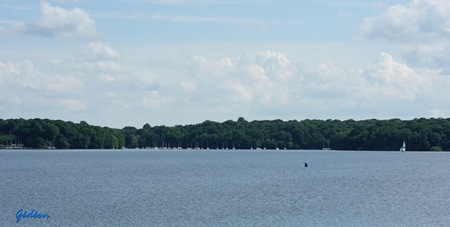 Triathlon des Lacs de l'Eau d'Heure 6